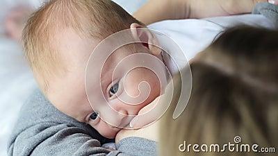 Cuidado da matriz Bebê amamentando video estoque
