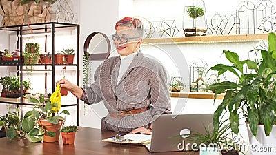 Cuidadosa mujer de negocios regadora plantas en la olla de su oficina almacen de metraje de vídeo
