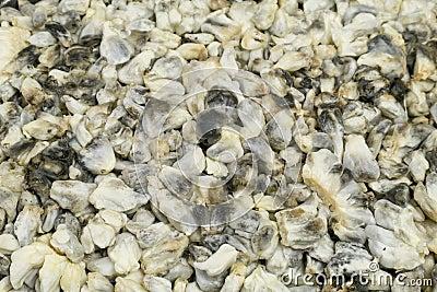 Cuitlacoche Mexican Corn Fungi Dish