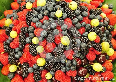 Culinary fruits