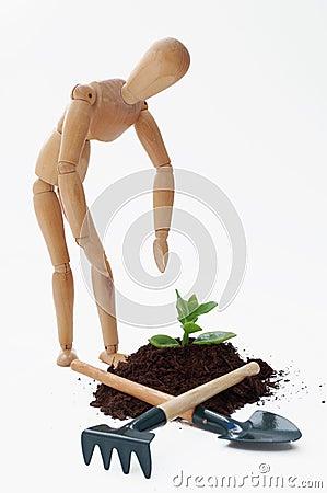 Cultivation concept