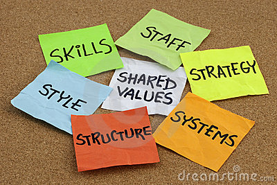 Cultura e desenvolvimento de organização
