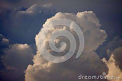 Cumulus Cloud Top