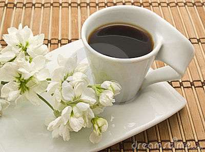 http://thumbs.dreamstime.com/x/cup-coffee-flowers-10247302.jpg
