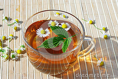 Cup of herbal tea with chamomile and green leaf