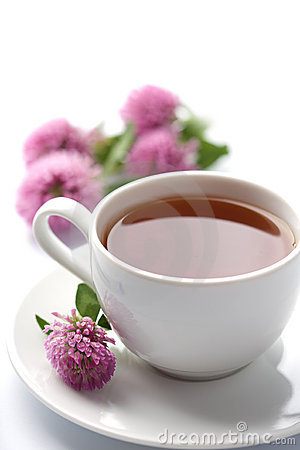 Cup of herbal tea and clover flowers isolated