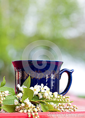 Cup of hot beverage with cherry blossom