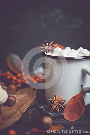 Free Cup Of Hot Chocolate With Marshmallows On The Rustic Wooden Background With Autumn Decoration Stock Images - 101841304