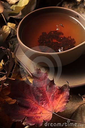 Free Cup Of Tea Royalty Free Stock Image - 16624266