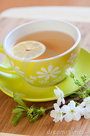 Free Cup Of Tea Royalty Free Stock Photos - 19236538