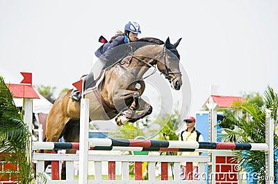 Cup primera Equestrian Show Jumping Foto de archivo editorial