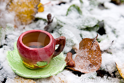 A cup of tea on background of snow-covered leaves