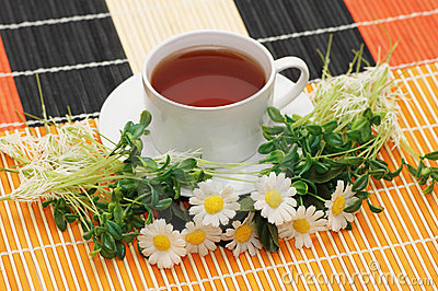 Cup of tea with herbs
