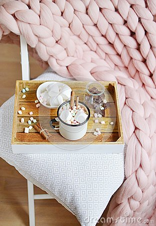Free Cup With Hot Chocolate, Bowl With Marshmallows, Jar With Chocolate, Pink Pastel Giant Plaid Stock Images - 105112524