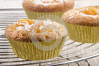 Cupcake with dried  organic apricots