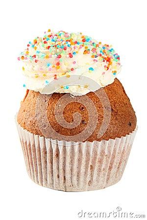 Cupcake and Icing