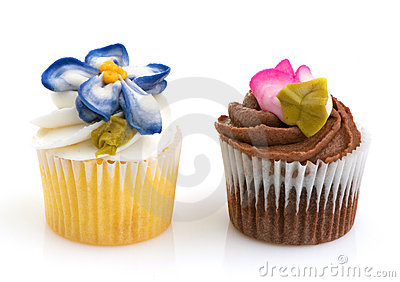 Cupcake Minis