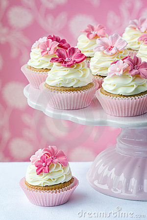 Free Cupcakes Stock Images - 13569894