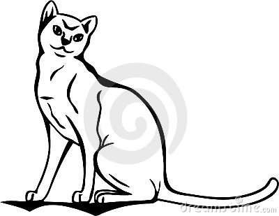 Curious cat vector