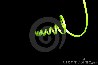 Curly tendril