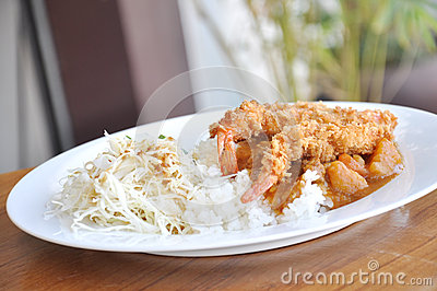 Curry on Rice and tempura