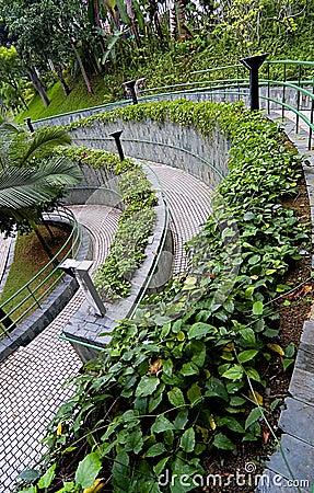 Curve Pathway