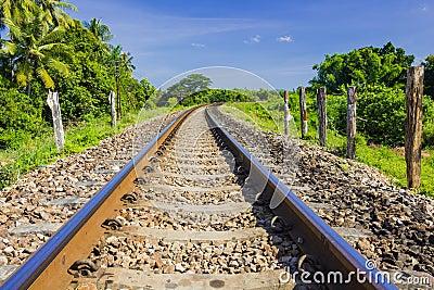 Curve railway track