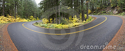 Curve in the Road Panoramic