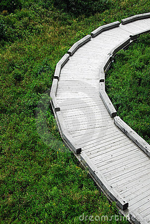 A Curved Path