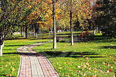 Curved path in autumn park