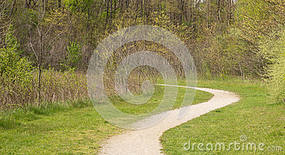 Curving Path through Clearing