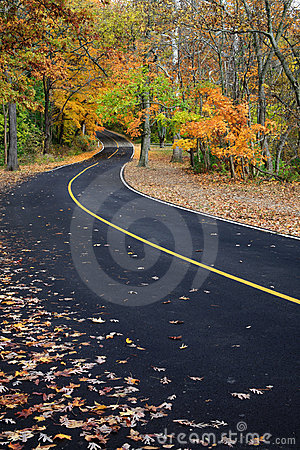 Curvy Blacktop Road