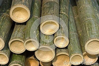 Cut Bambo