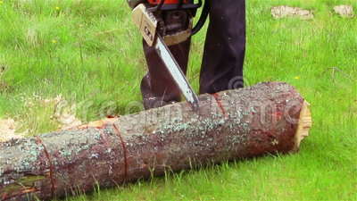 Cut Chainsaw stock footage