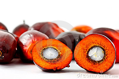 Cut oil palm fruit