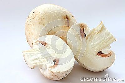 Cut raw mushrooms agarics