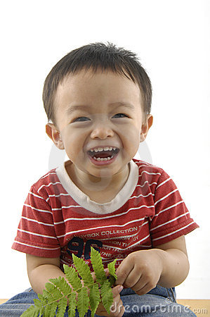 Free Cute Asian Kids Stock Images - 5233764