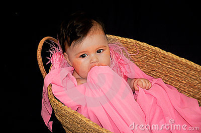 Cute baby girl in moses basket