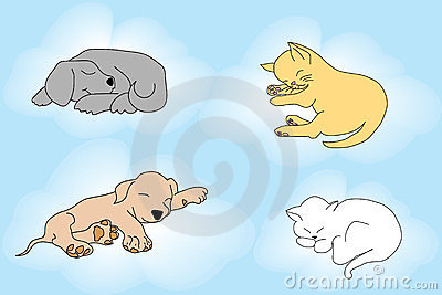 Cute background with sleepy cats and dogs