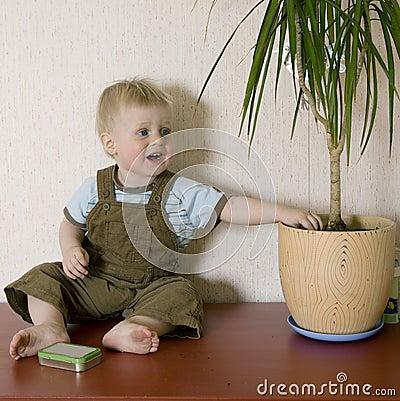 cute blond  boy dig  in earth in flowerpot