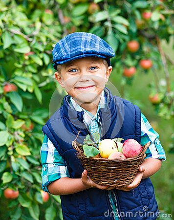 Cute boy in apple orchard