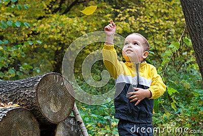 Cute boy and falling leaf
