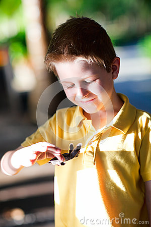 Free Cute Boy Holding Baby Turtle Stock Images - 25371114