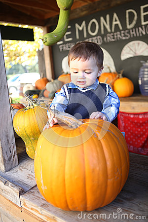 Cute Boy Picking Pumpkin