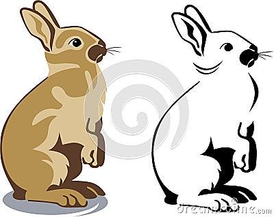 Cute brown bunny standing