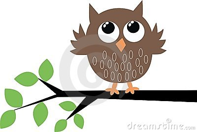 A cute brown owl