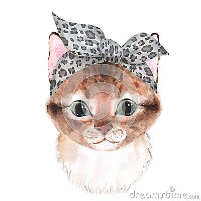 Free Cute Cat Wearing Bandana Stock Photography - 123549152