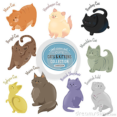 Free Cute Cats And Kittens Depicting Different Fur Color And Breeds Royalty Free Stock Photos - 67763358