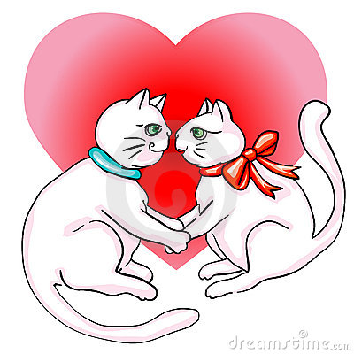 Cute cats valentine s day