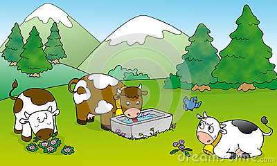 Cute cows, illustration for kids